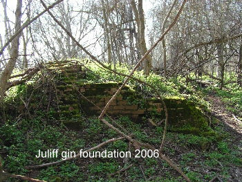 Remains of the Juliff gin built before 1890.
